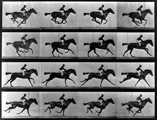 The-Horse-in-Motion-1878-Edward-Muybridge